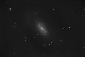 NGC 2903 12 minute raw uncalibrated luminance frame