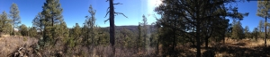 Southern view from the Stars End Observatory site. On the other side of the valley is the New Mexico Skies development